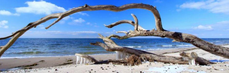 Direkte Strandlage, Top Ausstattung und fantastischer Meerblick