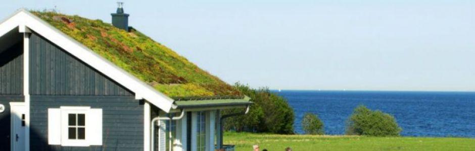 Ferienhäuser mit Meerblick